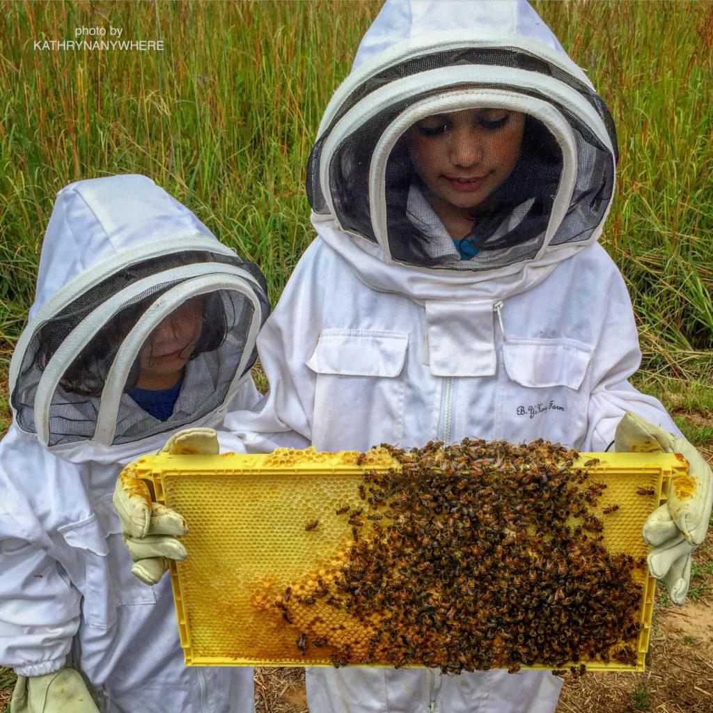 kid holding a honeycomb