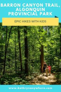 Epic Hikes With Kids - BARRON CANYON TRAIL, Algonquin Provincial Park #discoverON #exploremore #barroncanyontrail  #algonquinpark #travelbloggerexchange #Torontoblogger #bestfamilytravelblogger #easternontario #getoutside #liveoutdoors #ontarioparks #welivetoexplore #familytravelblogger #hikingwithkids #kidswhohike #hikingmom