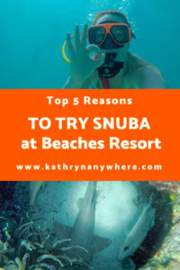 Top 5 Reasons to try SNUBA #diving #Scuba #dive #snorkeling #scubadive #SNUBA #snubalife #trysnuba #whyyoushouldtrysnuba #BeachesMoms #top5reasons #beachesturksandcaicos #underthesea #marinelife #littlemermaid