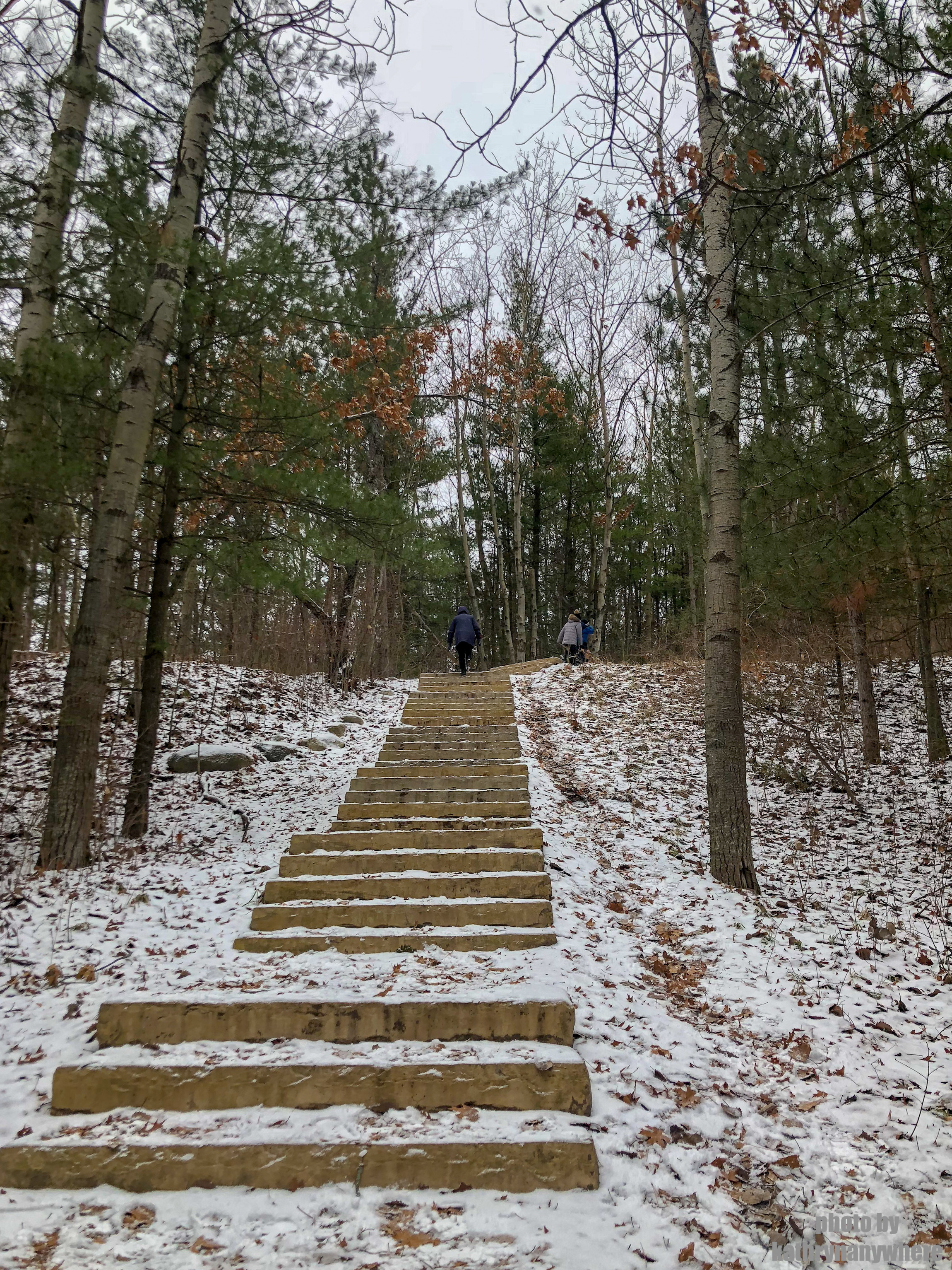 First set of stairs on the Sager Conservation Area Trail hike #sagerconservationarea #womenwhohike #wanderlust #getoutstayout #letsgosomewhere #exploretocreate #adventurelife #theoutbound #thosewhostray #traveldeeper #sheisnotlost #neverstopexploring #exploreclub #conservationarea #sagerconservation #yourstodiscover #discoverON