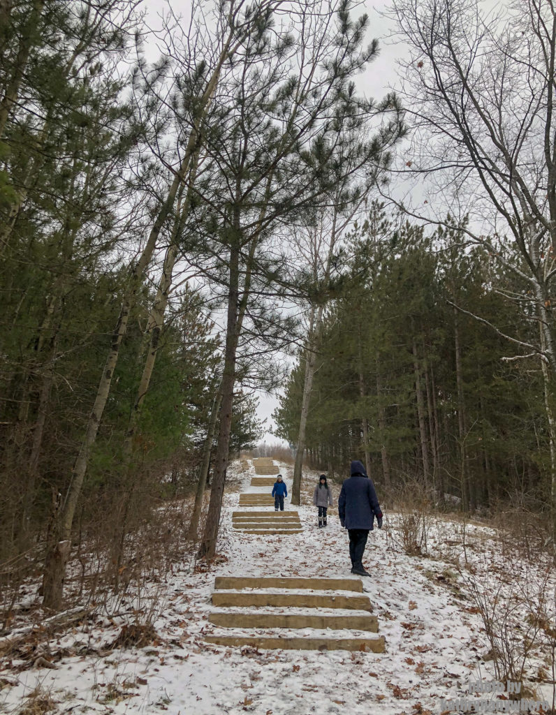 Second set of stairs on the Sager Conservation Area Trail hike #sagerconservationarea #womenwhohike #wanderlust #getoutstayout #letsgosomewhere #exploretocreate #kidswhohike #theoutbound #thosewhostray #traveldeeper #sheisnotlost #neverstopexploring #exploreclub #conservationarea #sagerconservation #yourstodiscover #discoverON #kidswhoexplore