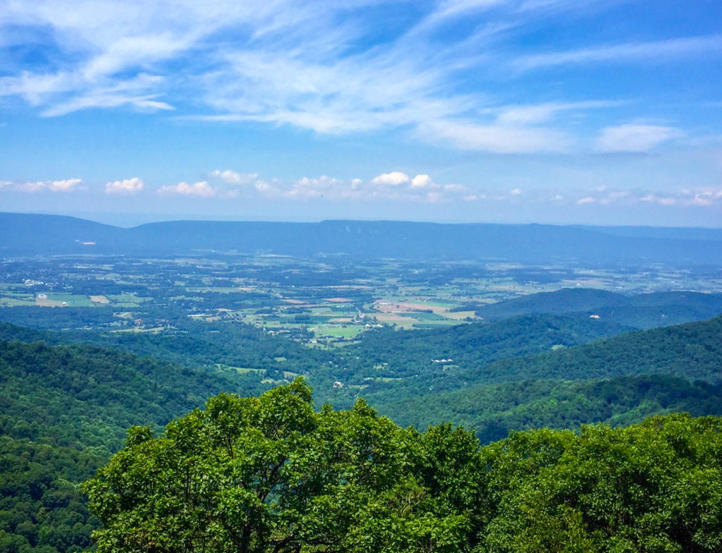 Taken from one of the look outs on Skyline drive in Shenandoah National Park #ShenNPS #shenandoahnationalpark #shenandoah #virginia #Kathrynanywhere