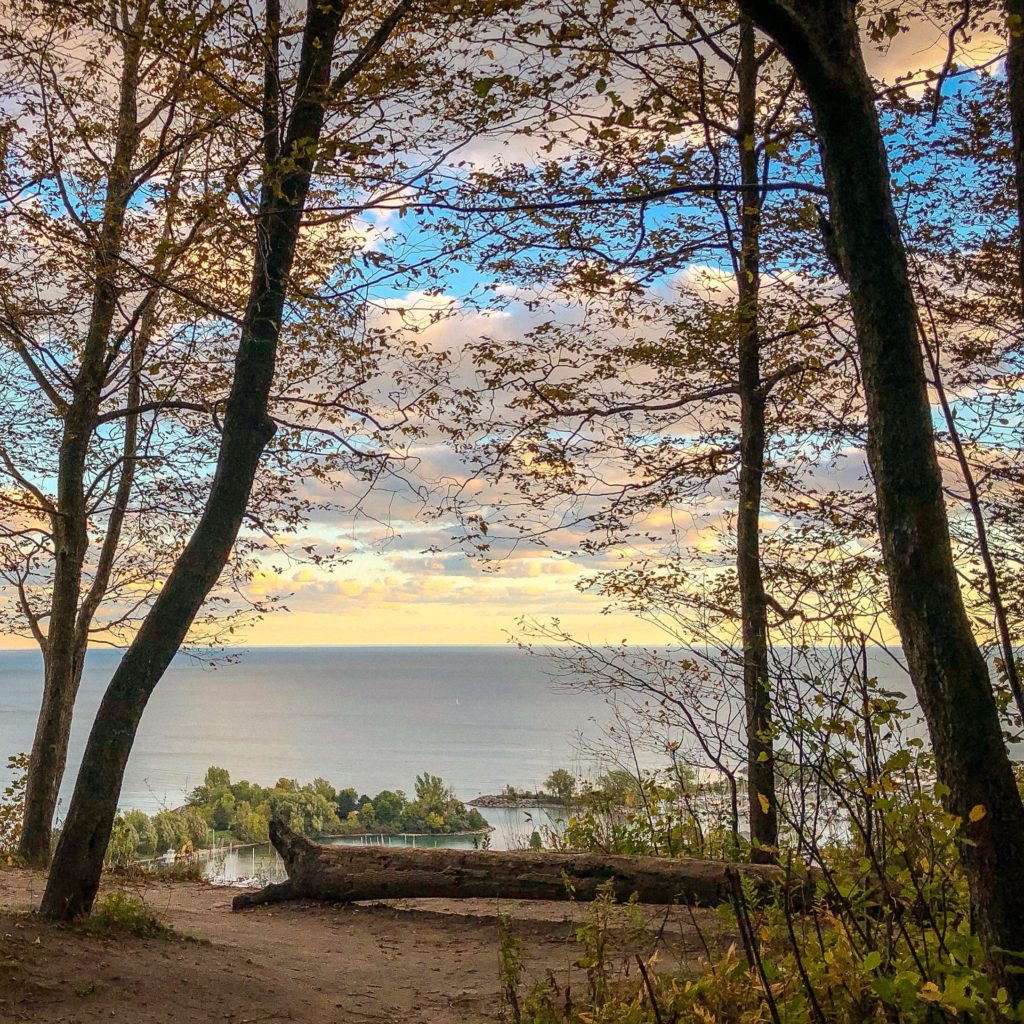 View from Scarborough Bluffs, Toronto Ontario. Unique places to explore in Ontario #autumncolours #fallfoliage #curiocitytoronto #visualizetoronto #scarboroughbluffs #scarborough #scarboroughontario #torontoviews #canadiancreatives #imagesofcanada #viewsfordays #cliffside #exploreontario #kathrynanywhere