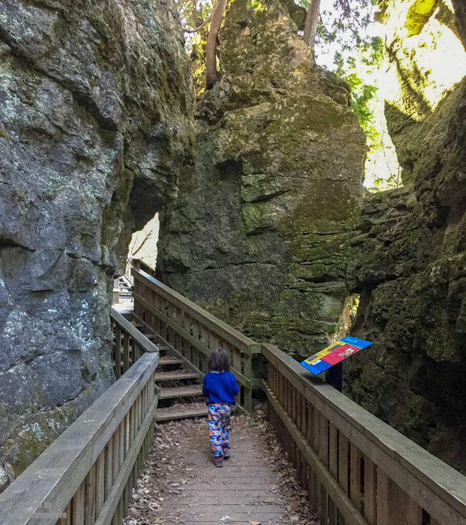 boardwalk at mono cliffs provincial park - best hiking trails for families in Ontario