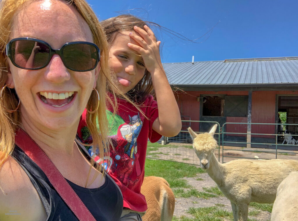 Little man and I enjoying our time with the Alpacas at WestPark alpaca farm in Slippery Rock, PA