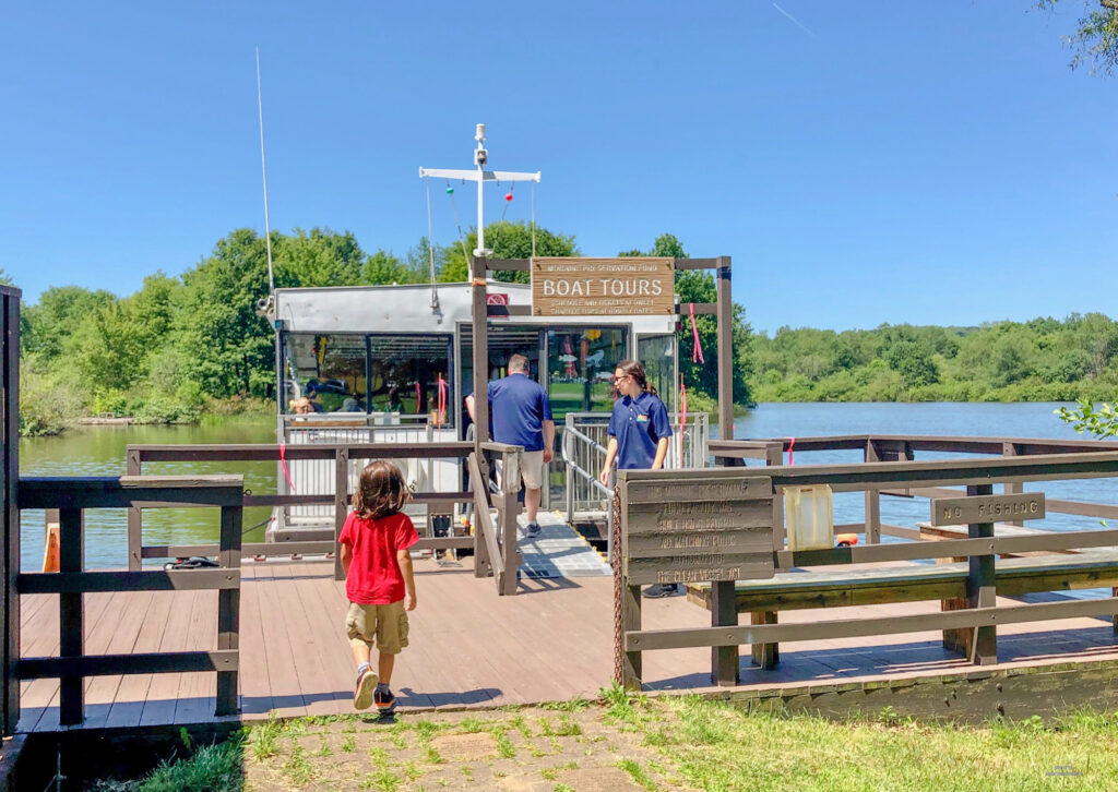 Best way to see Lake Arthur at Moraine State Park? Take the Nautical Nature pontoon boat cruise. Sit back, relax and see this man made lake from a different angle #butlercountypa #hosted #mediatrip #boatrides #morainestatepark