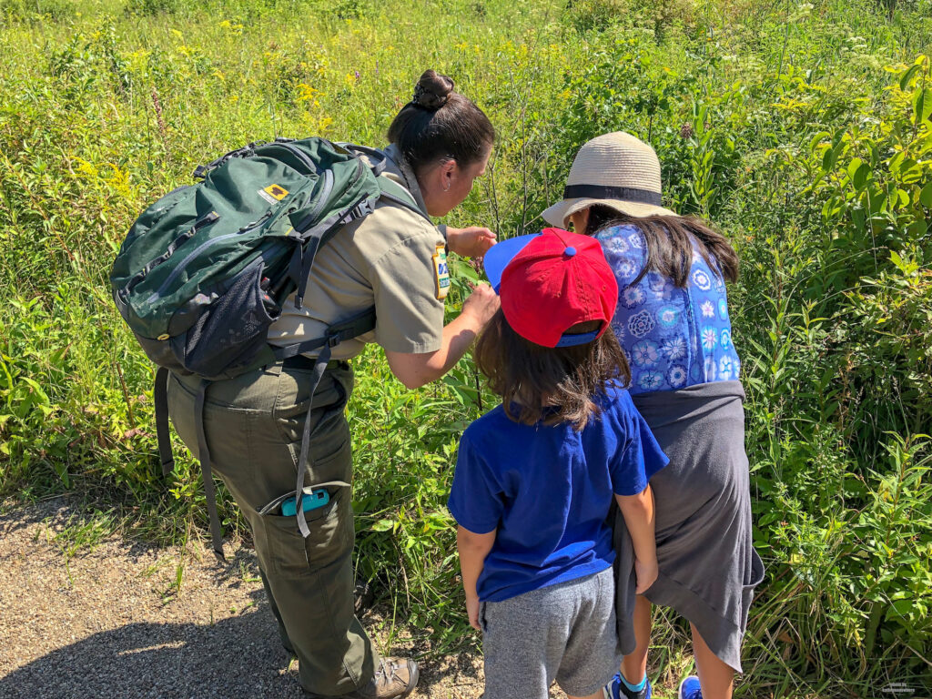 Brandi from Jennings Environmental Education Center in Butler County PA showing my kids a flower.