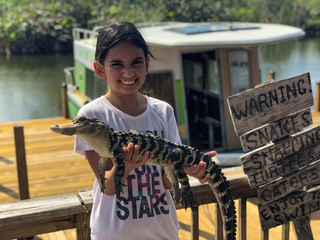 Miss M holding a baby alligator with Captain Bob's Excellent day safaris in Fort Myers, Florida.