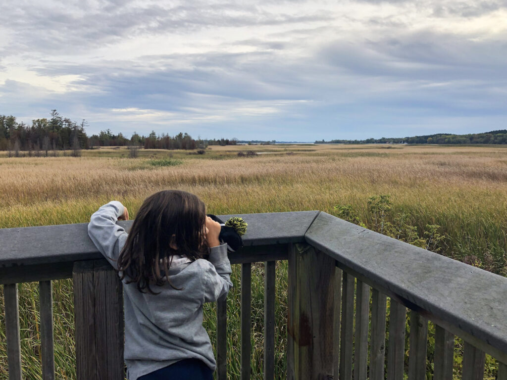 Attempting to woo some birds at Marsh Boardwalk look out in Presqu'ile Provincial Park, Ontario