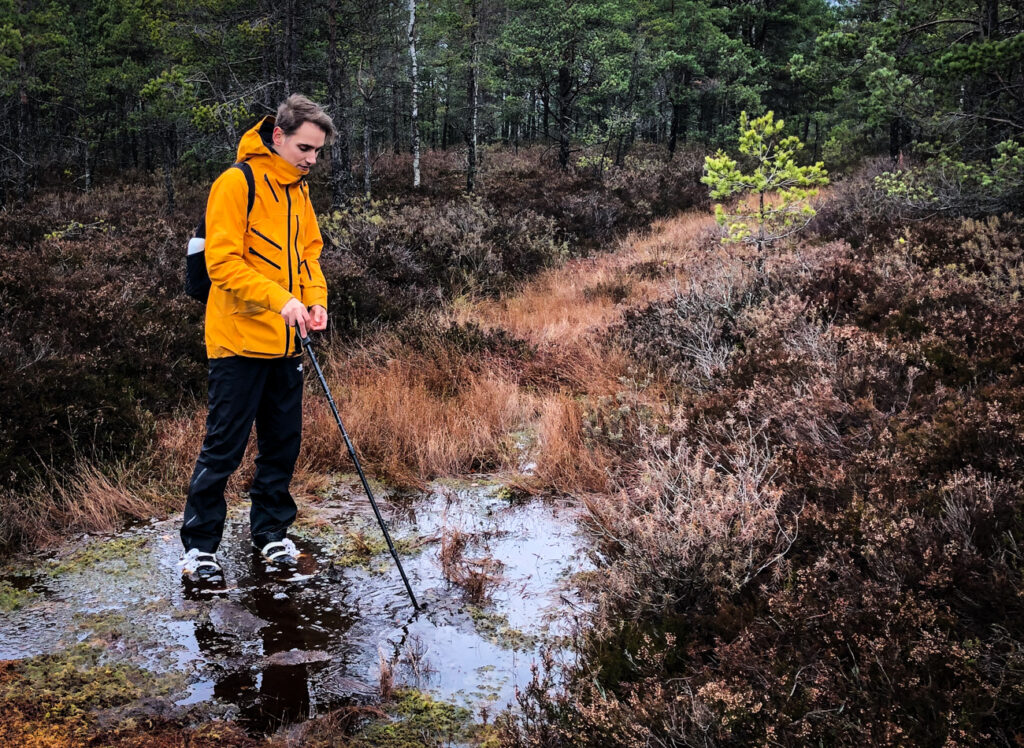 Our guide in the Kemeri bog showing us the depth in some places