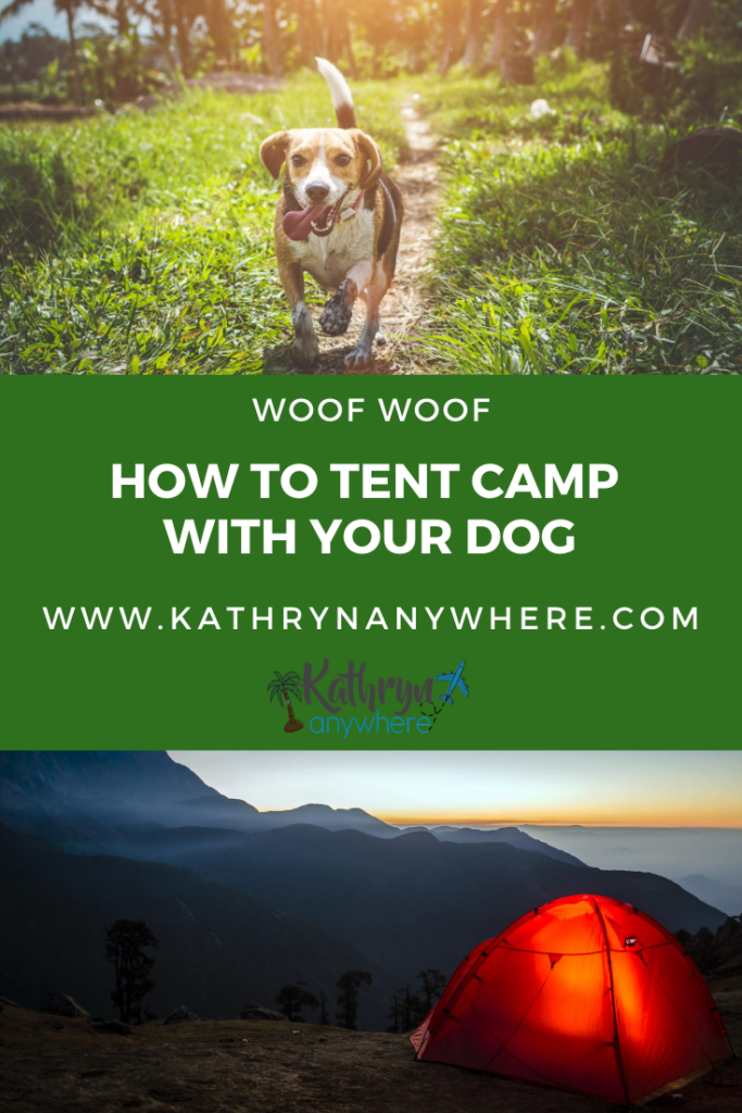 How To Camp With A Dog - You're going to have to accept that you have less freedom and if you have camped with toddlers, you will basically understand. Food, sleep, water, it's all covered here