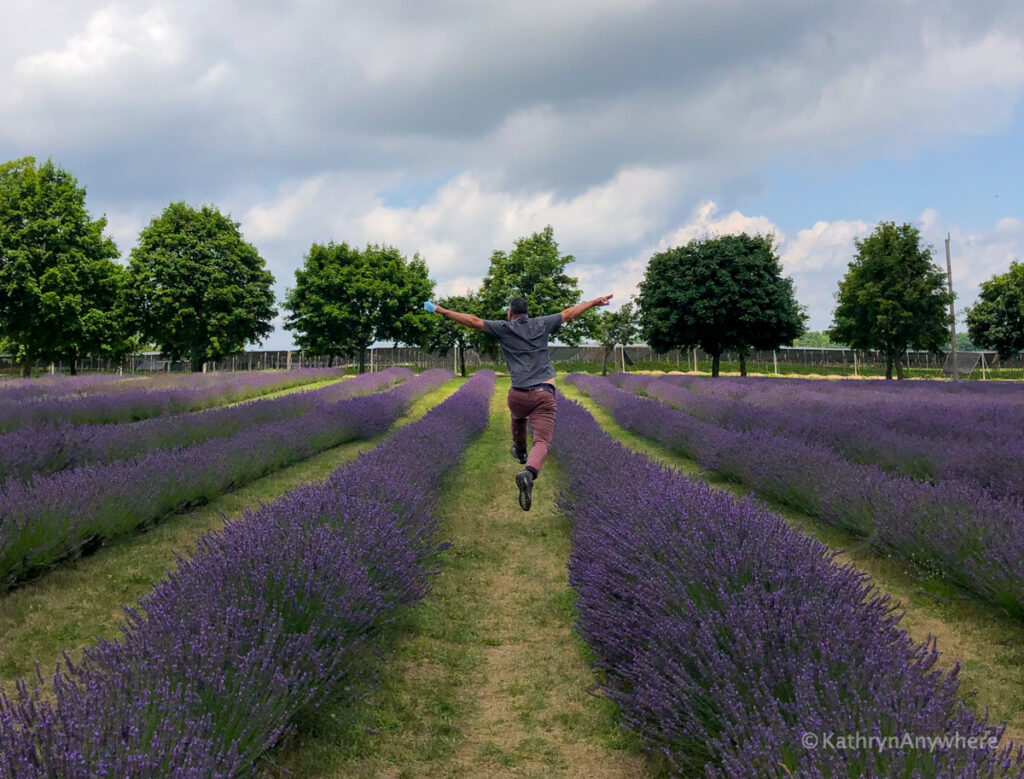 Bonnieheath Lavender and winery, Kevin Wagar dancing through the lavender fields