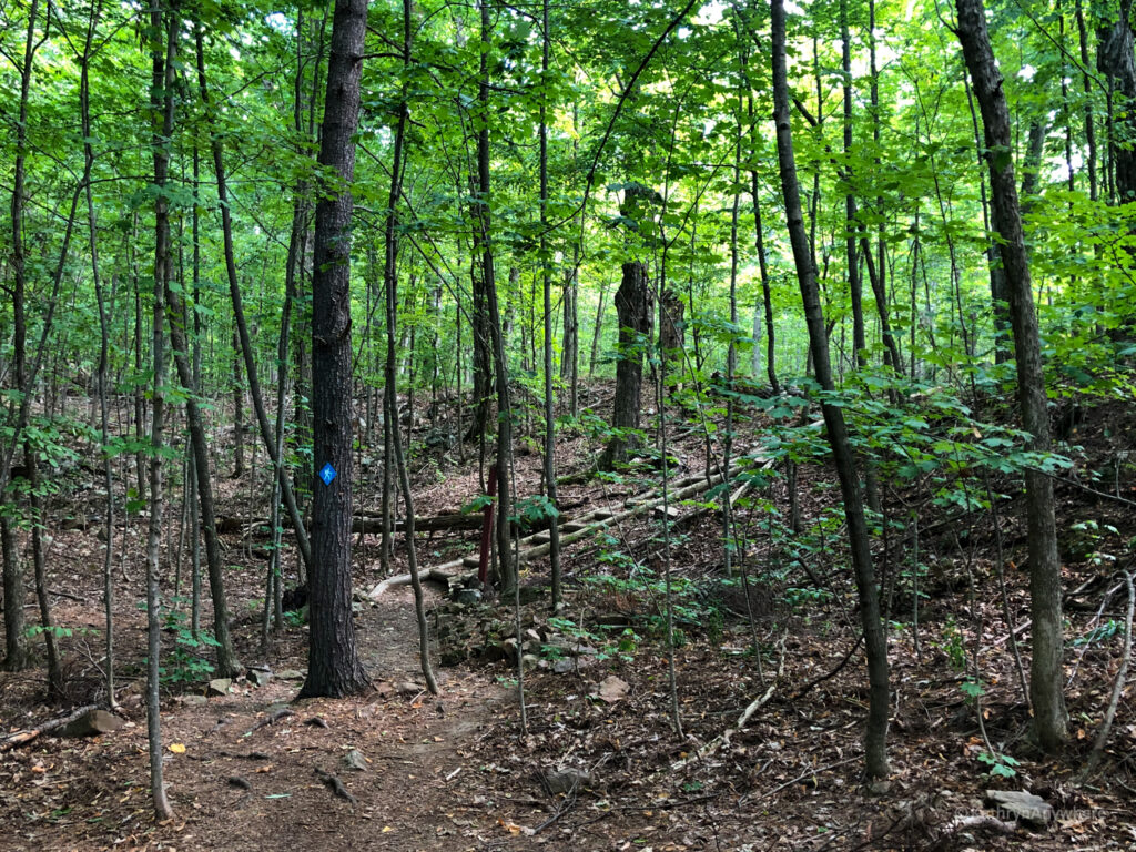 Hiking trails in Landon Bay, 1000 islands