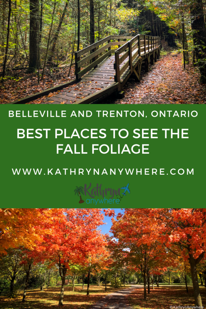 Where to find the fall colours in Belleville and Trenton and surrounding area. The most beautiful autumn hues in the Bay of Quinte Region.
