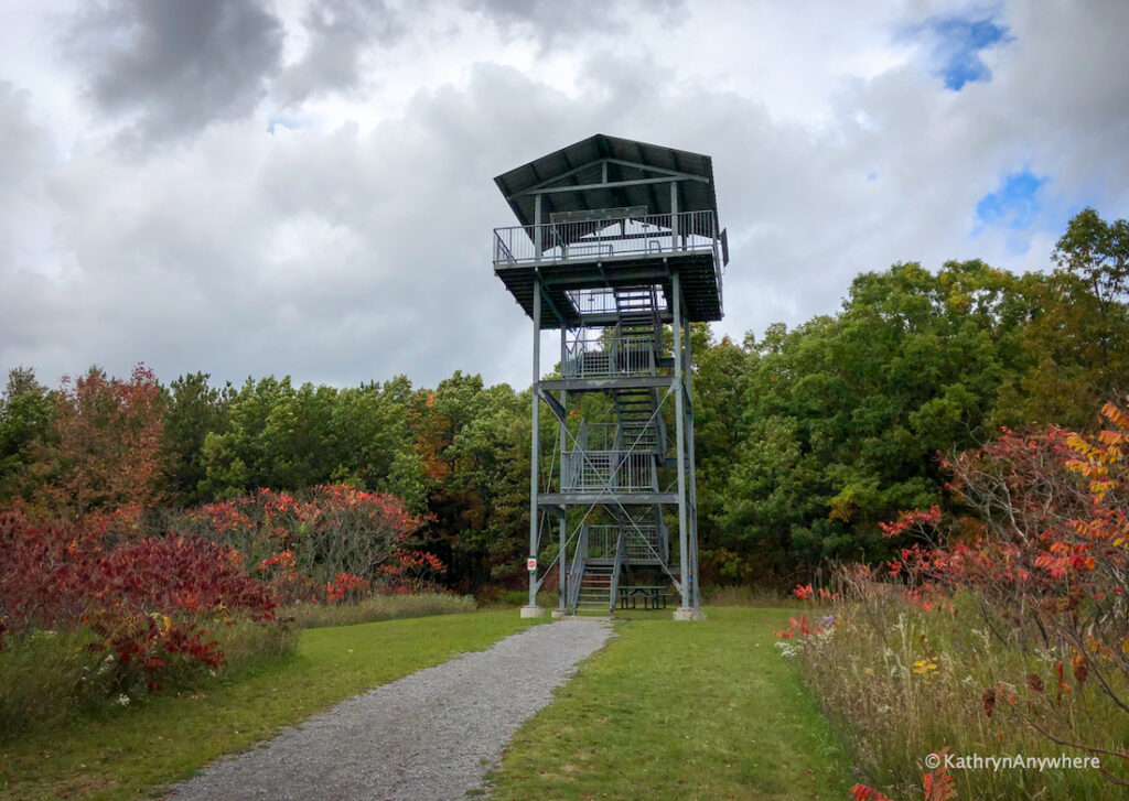 Sager Conservation Area TOWER - one of the best places to see fall colours in Belleville and Trenton area