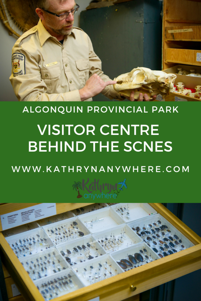 If you have been to Algonquin Park in Ontario, you may have been to the Algonquin Park Visitor Centre. It opened in 1993 to celebrate the 100th anniversary of Algonquin Provincial Park