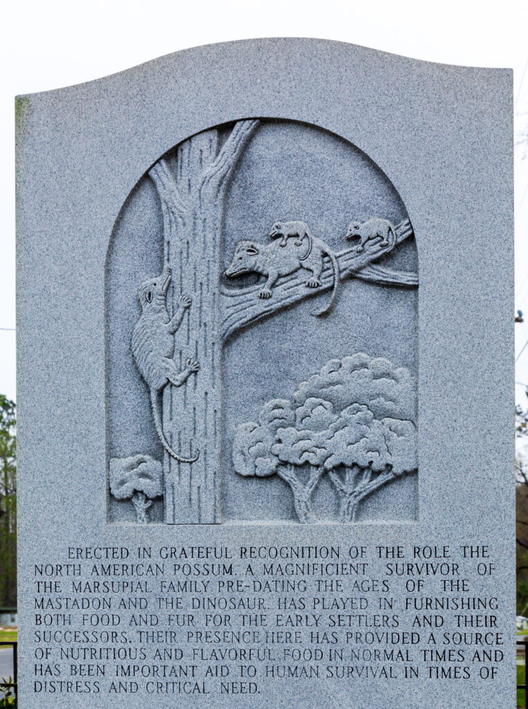 Possum Monument, Florida