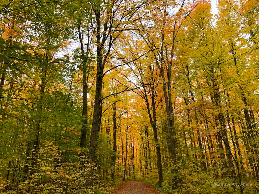Hiking etiquette when enjoying autumn colours