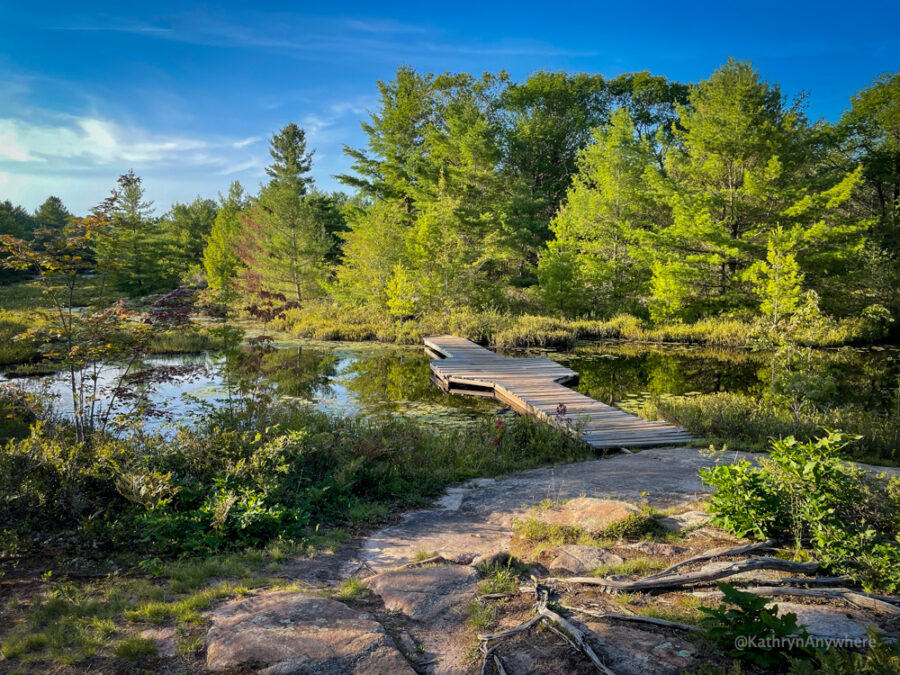 Six Mile Lake Provincial Park Living Edge Trail Boardwalk hiking etiquette